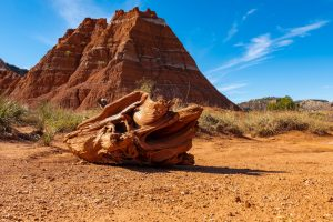 Visiter le Palo Duro Canyon State Park